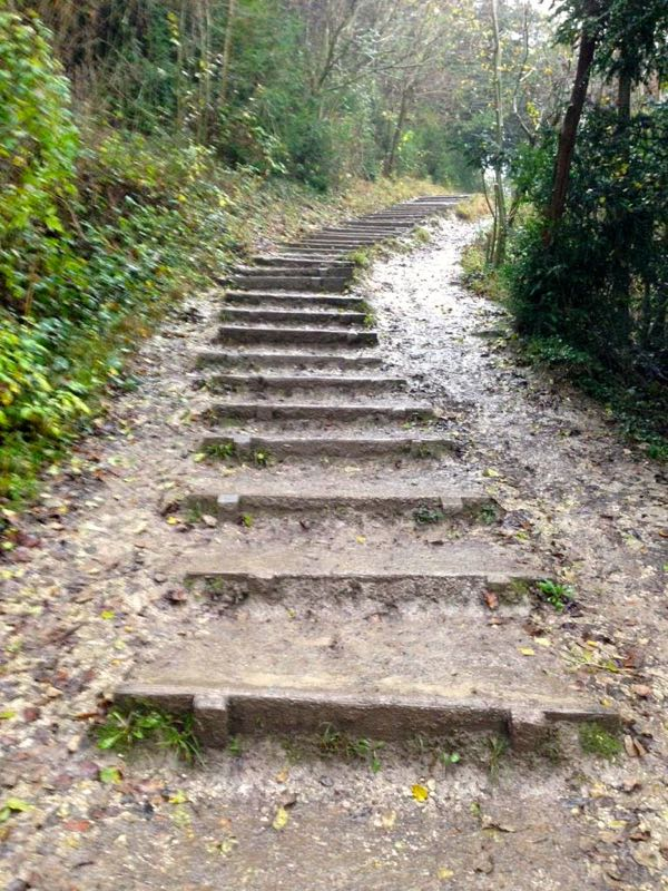 Three Molehills - Box Hill steps