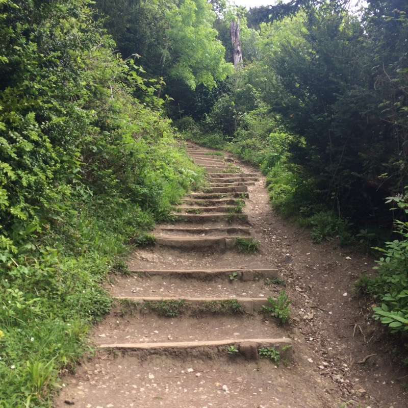 Box Hill steps